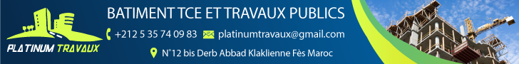 PLATINUM TRAVAUX